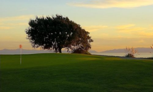 what to look for in a golf course